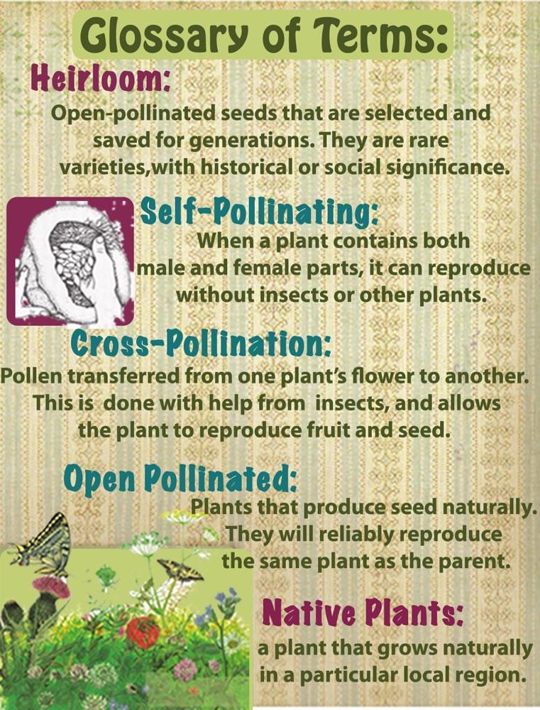 seed-saving-glossary