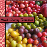tomato-mixed-cherry