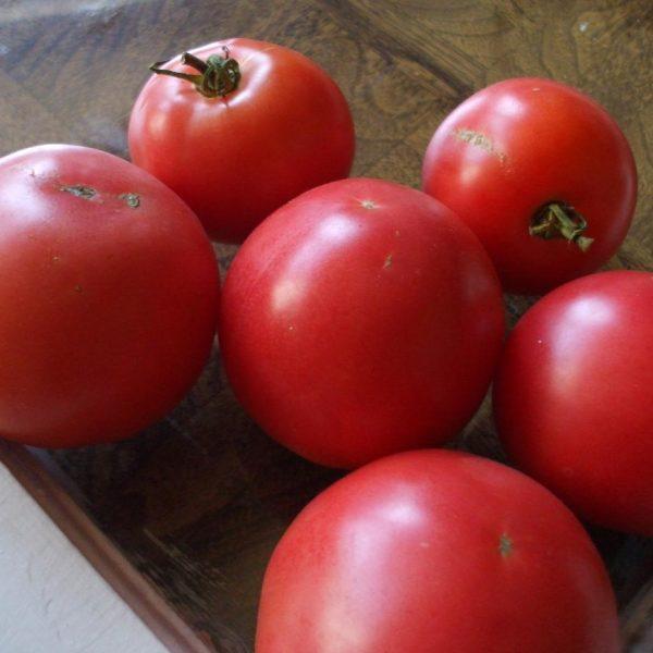Eva Purple Ball Tomatoes
