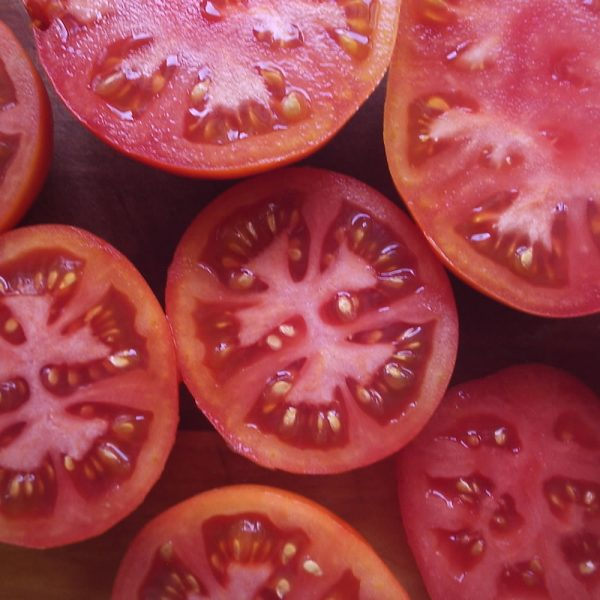 Stupice Heirloom Tomato